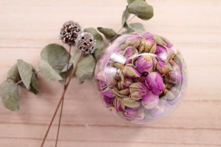 粉玫瑰花(Rose Pink)