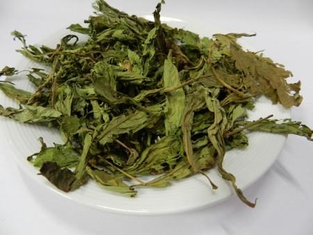 甜菊葉(Stevia)