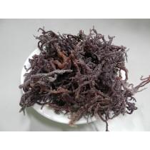 特選紅珊瑚草-600g