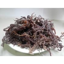 特選紅珊瑚草-300g