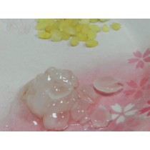 野生皂角米(雪蓮片)600公克