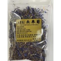 矢車菊(天堂鳥)(cornflower)