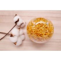 金盞花(Marigold)